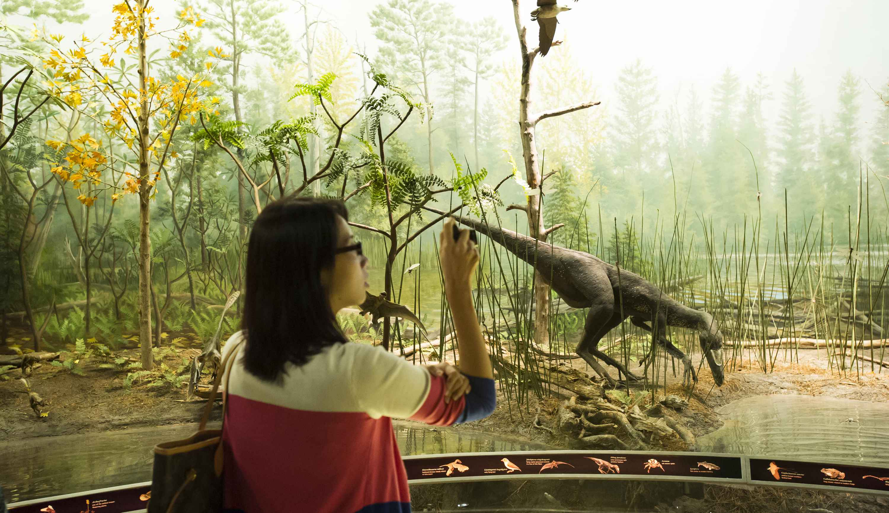 Dinosaurs: Pameran Dawn to Extinction.