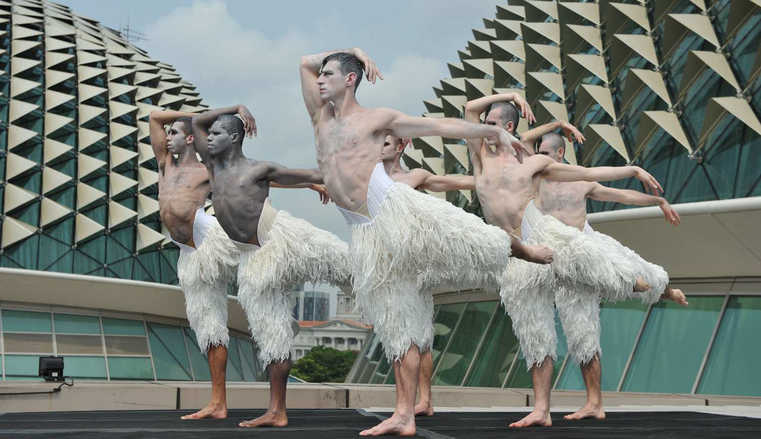 Singapore STories - Pertunjukan Swan Lake