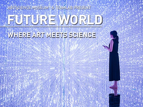Future World at ArtScience Museum