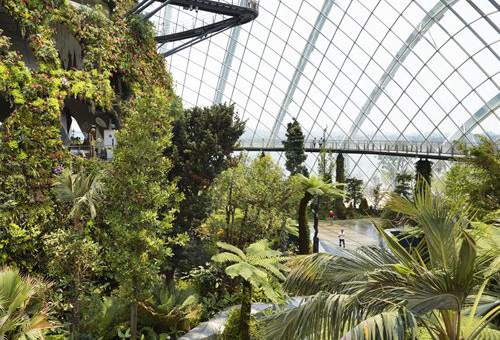 Conservatories in the Gardens by the Bay